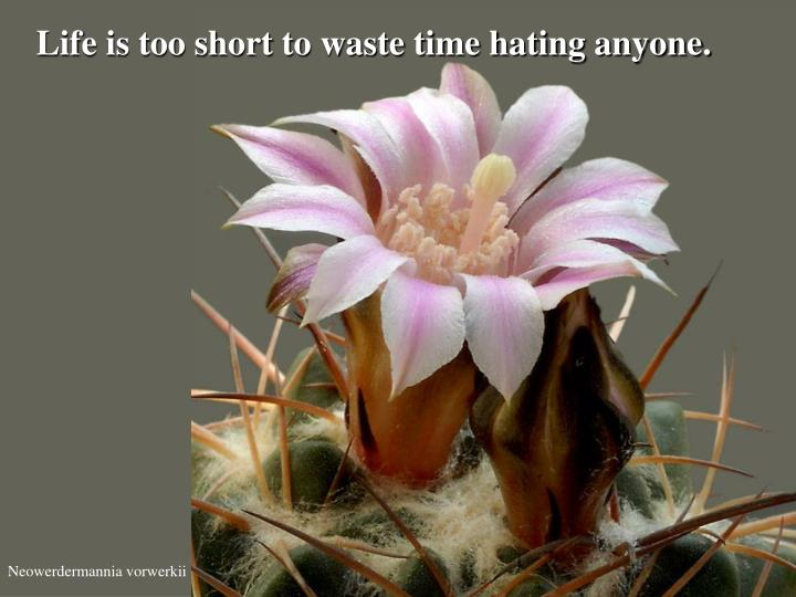 Life is too short to waste time hating anyone.