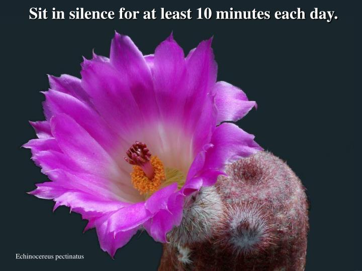 Sit in silence for at least 10 minutes each day.