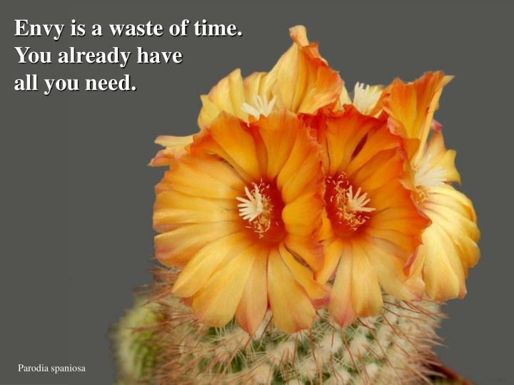 Envy is a waste of time.