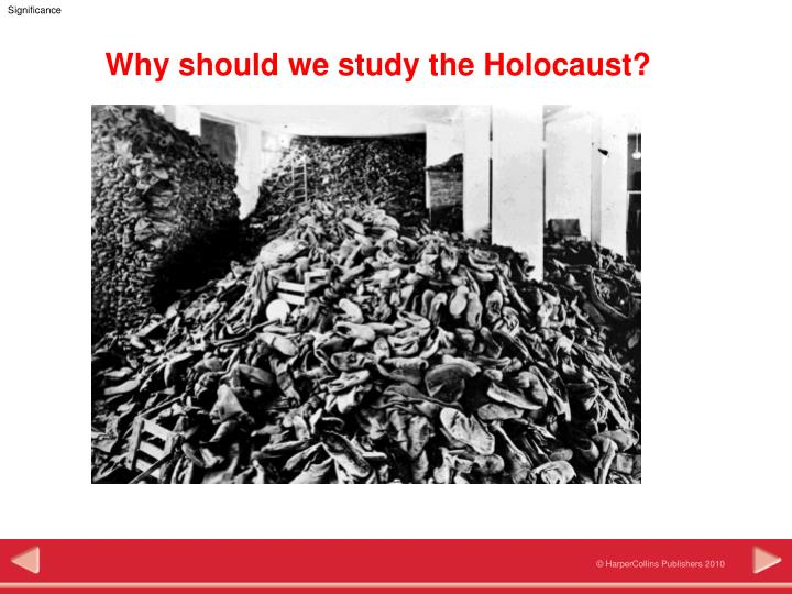 why should we study the holocaust n.