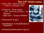 the 14 th dalai lama