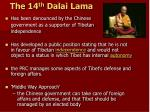 the 14 th dalai lama2
