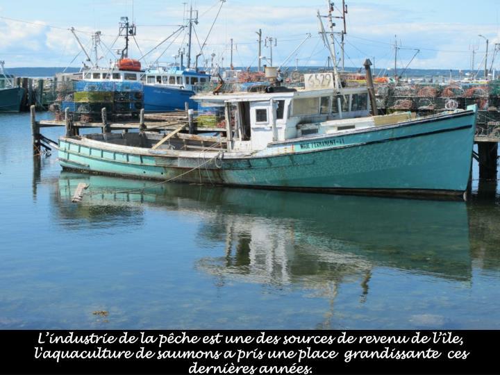 L'industrie de la pêche est une des sources de revenu de l'île, l'aquaculture de saumons a pris une place  grandissante  ces dernières années.
