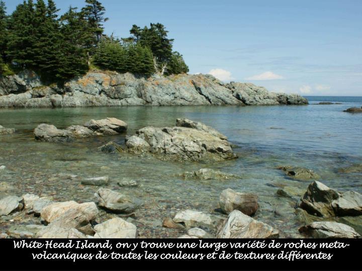 White Head Island, on y trouve une large variété de roches meta-volcaniques de toutes les couleurs et de textures différentes