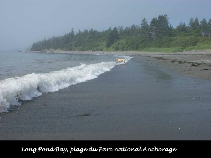 Long Pond Bay, plage du Parc national Anchorage