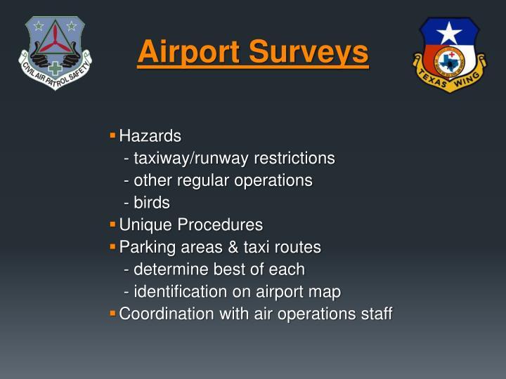 Airport Surveys