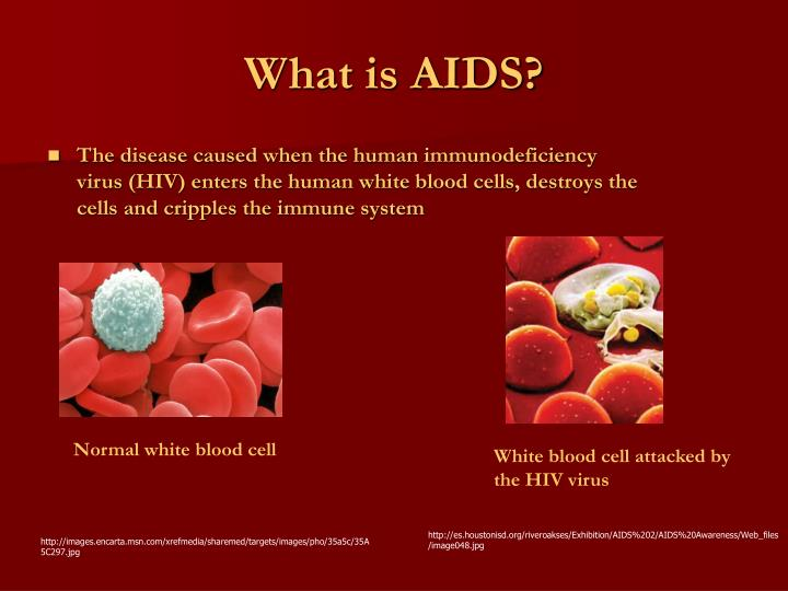 hiv the leading infectious disease in the world The world health organization warned in its 2007 report that infectious diseases are emerging at a rate that has not been seen before since the 1970s, about 40 infectious diseases have been discovered, including sars, mers, ebola, chikungunya, avian flu, swine flu and, most recently, zika.