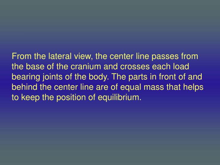 From the lateral view, the center line passes from the base of the cranium and crosses each load bearing joints of the body. The parts in front of and behind the center line are of equal mass that helps to keep the position of equilibrium.