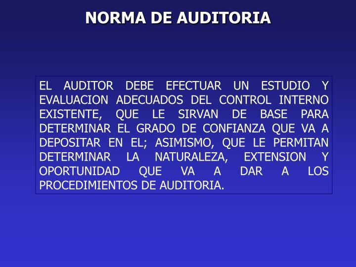NORMA DE AUDITORIA