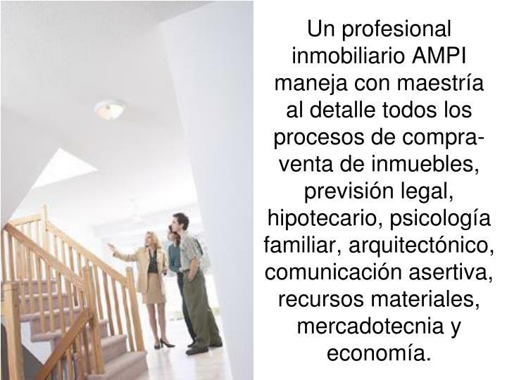 Un profesional inmobiliario AMPI maneja con maestría al detalle todos los procesos de compra- venta de inmuebles, previsión legal, hipotecario, psicología familiar, arquitectónico, comunicación asertiva, recursos materiales, mercadotecnia y economía.