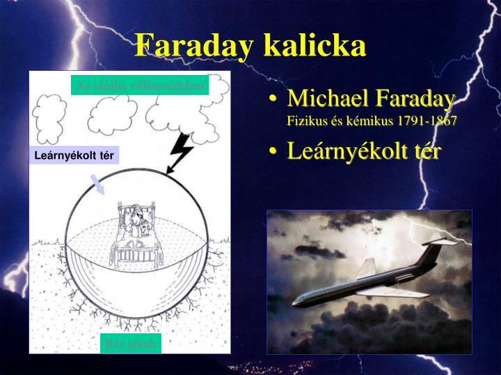 Faraday kalicka