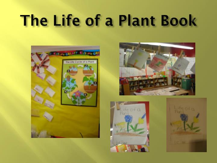 The Life of a Plant Book