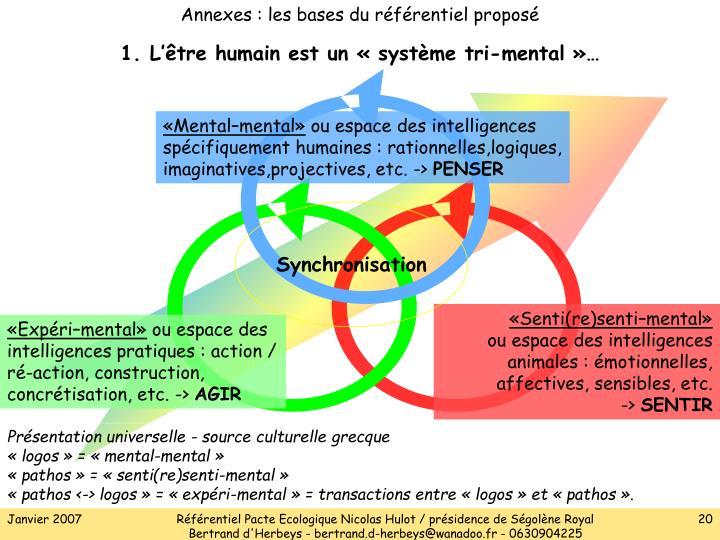 Annexes : les bases du référentiel proposé