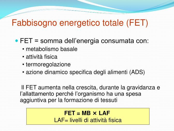 Fabbisogno energetico totale (FET)