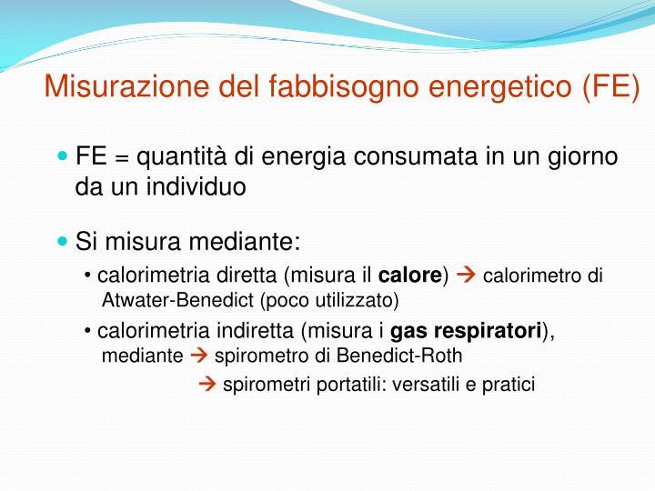 Misurazione del fabbisogno energetico (FE)