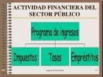 actividad financiera del sector p blico2