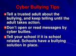 cyber bullying tips