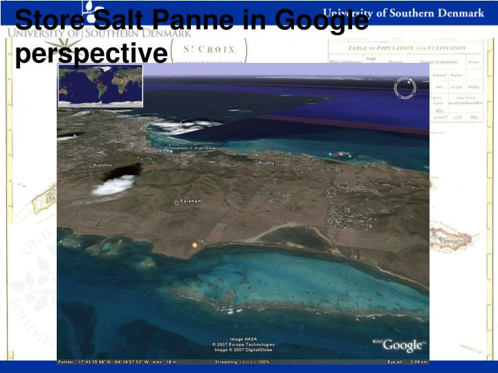 Store Salt Panne in Google perspective