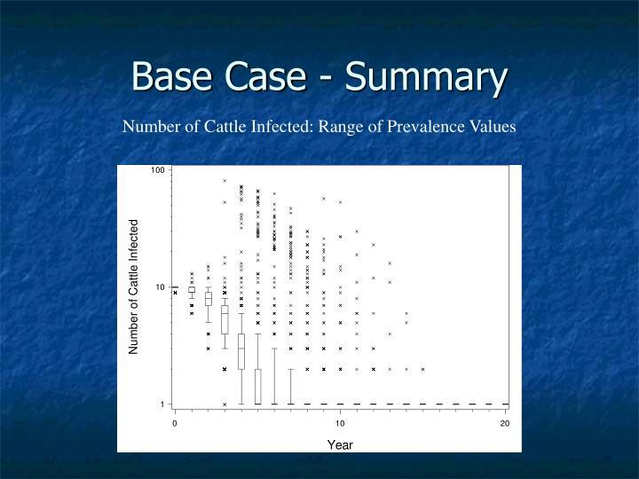 Base Case - Summary