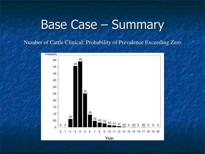 Base Case – Summary