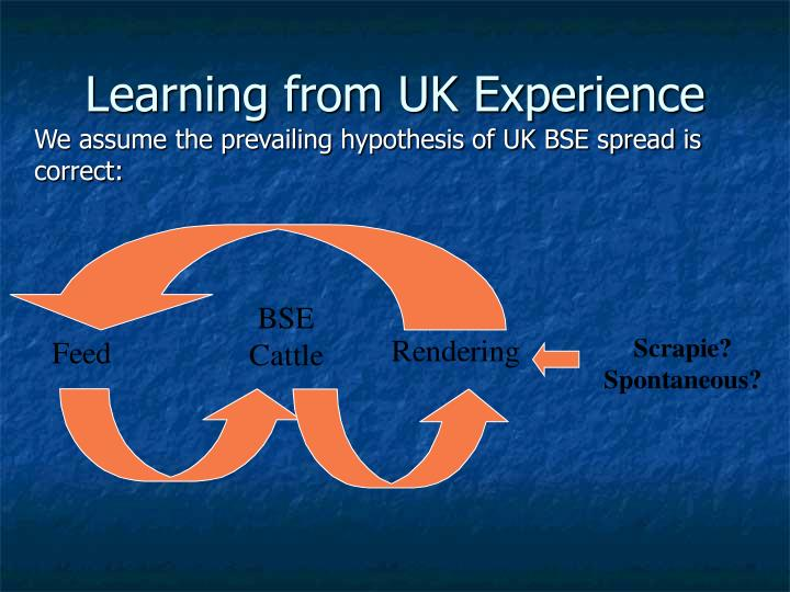 Learning from UK Experience