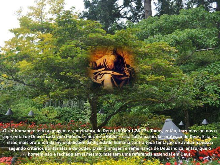 O ser humano é feito à imagem e semelhança de Deus (