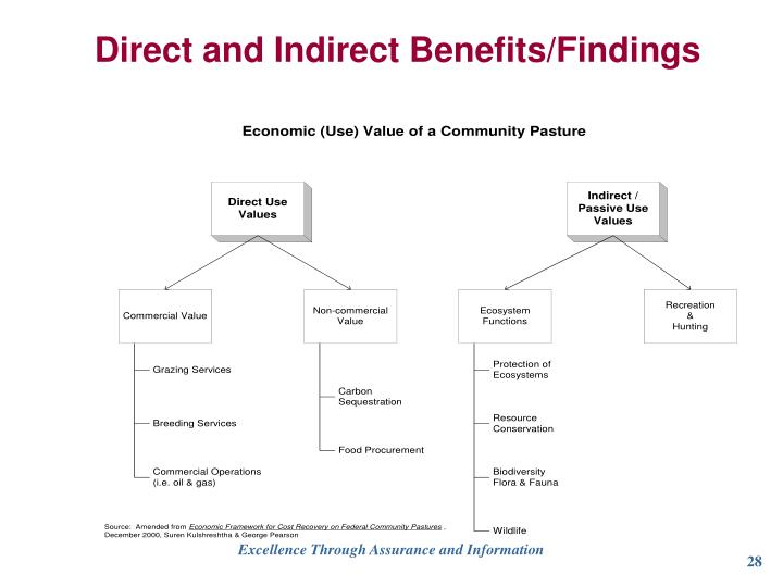 Direct and Indirect Benefits/Findings