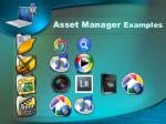 asset manager examples
