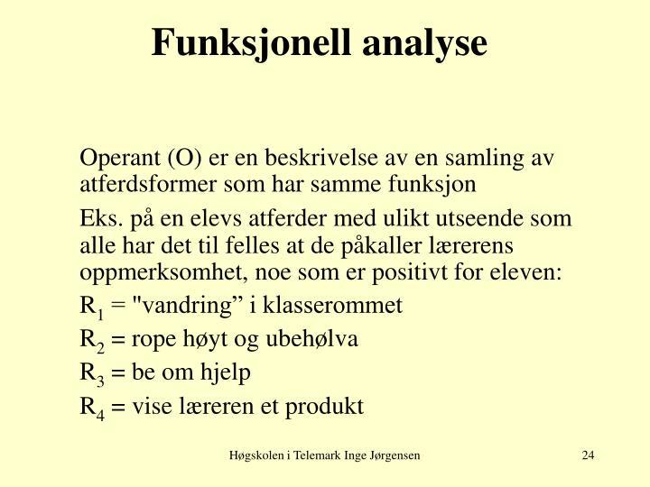 Funksjonell analyse