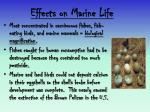 effects on marine life2