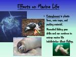 effects on marine life4