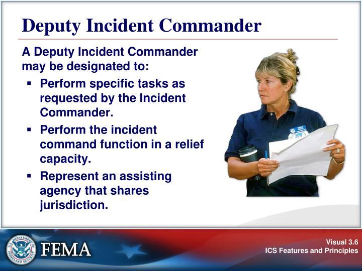 Deputy Incident Commander