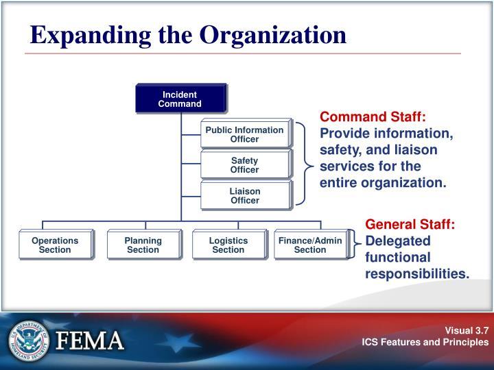 Expanding the Organization