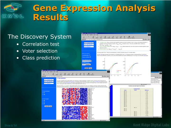 Gene Expression Analysis Results