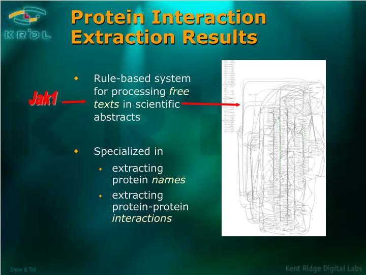 Protein Interaction Extraction Results