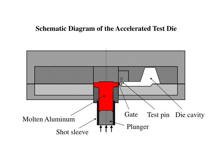 Schematic Diagram of the Accelerated Test Die