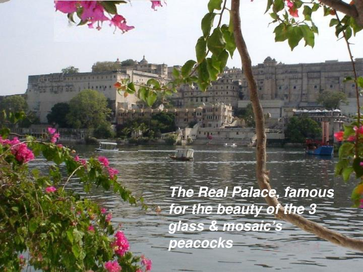 The Real Palace, famous for the beauty of the 3 glass & mosaic's peacocks