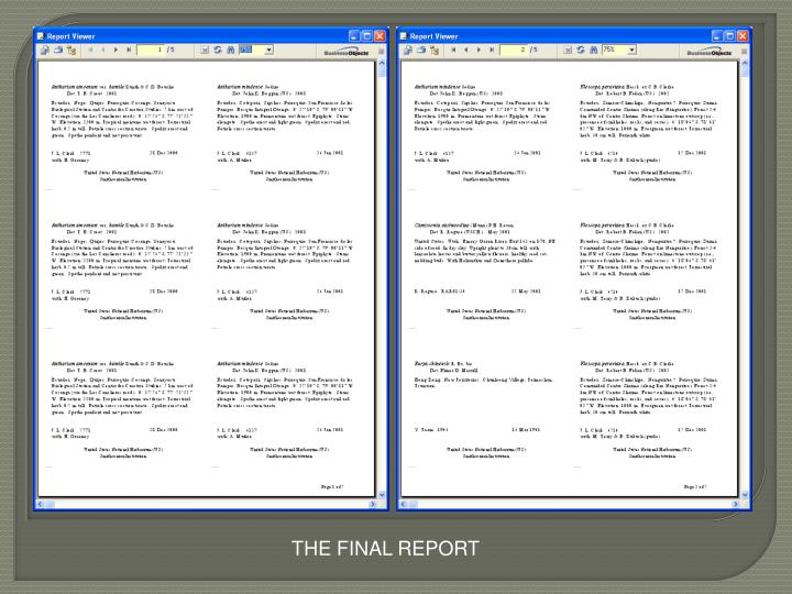 THE FINAL REPORT