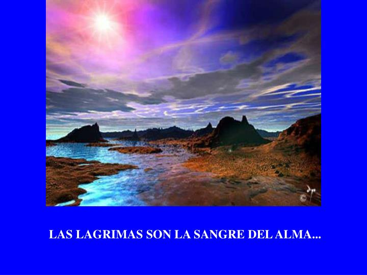 LAS LAGRIMAS SON LA SANGRE DEL ALMA...