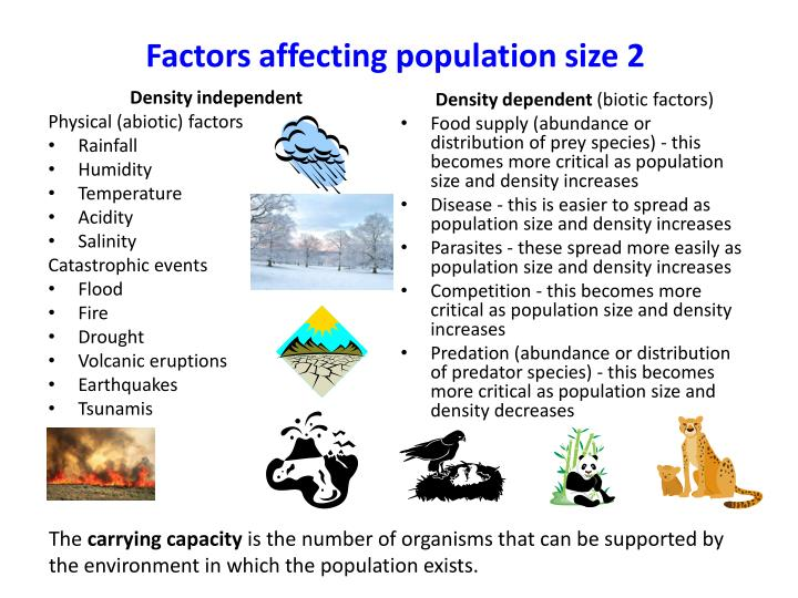 the major factors affecting the change in population rates Comments and voiced of sentiments of the shifters' and academics led the researcher to question the factors affecting the shifters' population and if the problem exists with the course broad field of accountancy requires varying levels of competence, skills and intellectual abilities.