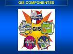 gis componentes