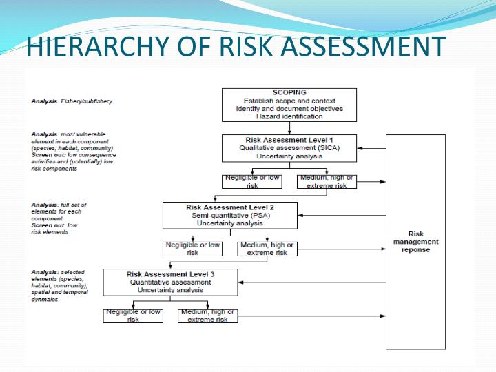 HIERARCHY OF RISK ASSESSMENT
