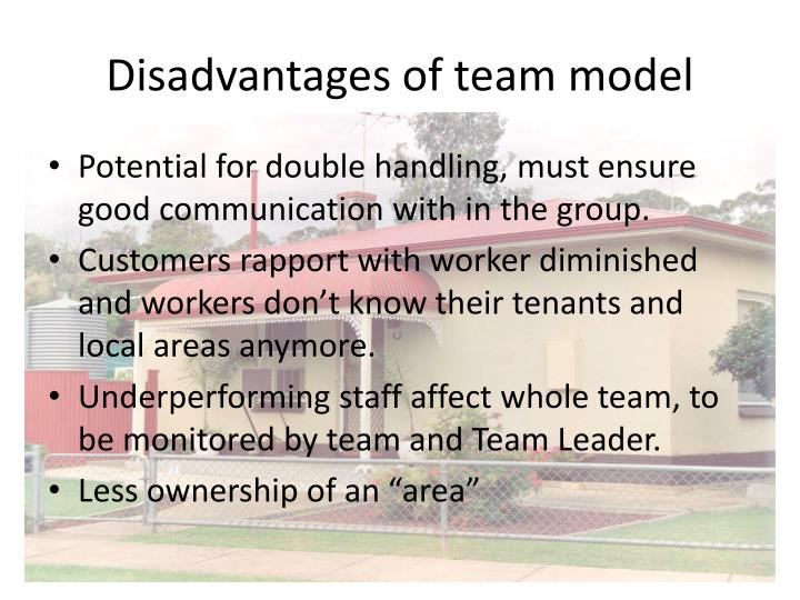 Disadvantages of team model