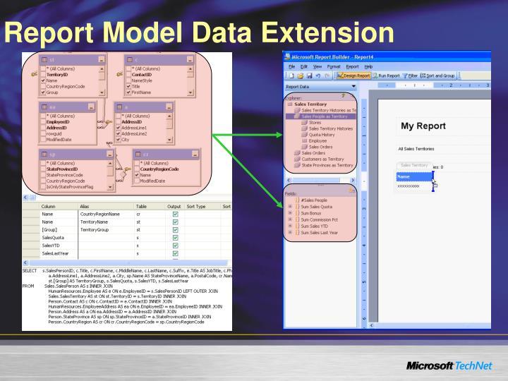 Report Model Data Extension