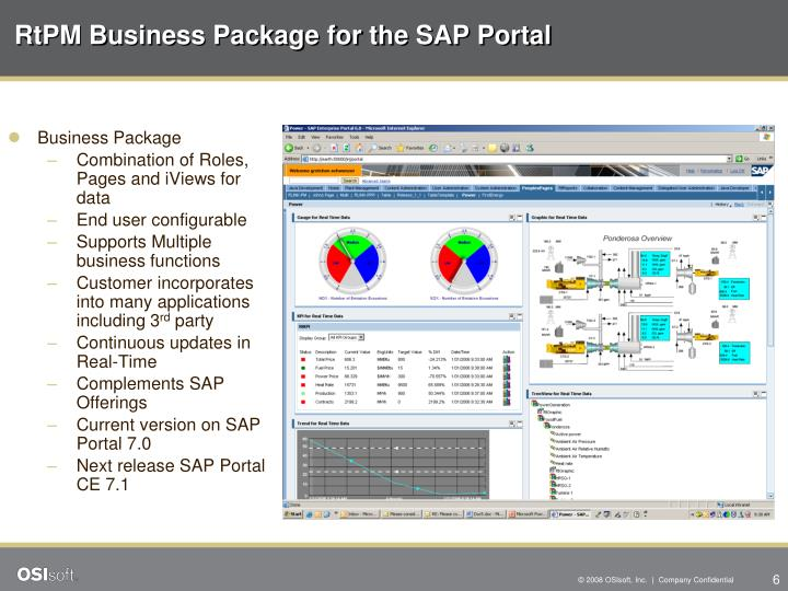 RtPM Business Package for the SAP Portal