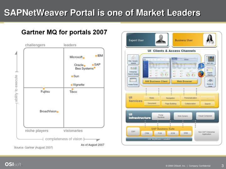 Sapnetweaver portal is one of market leaders