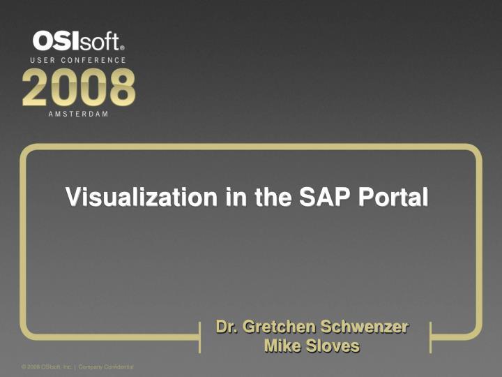Visualization in the sap portal