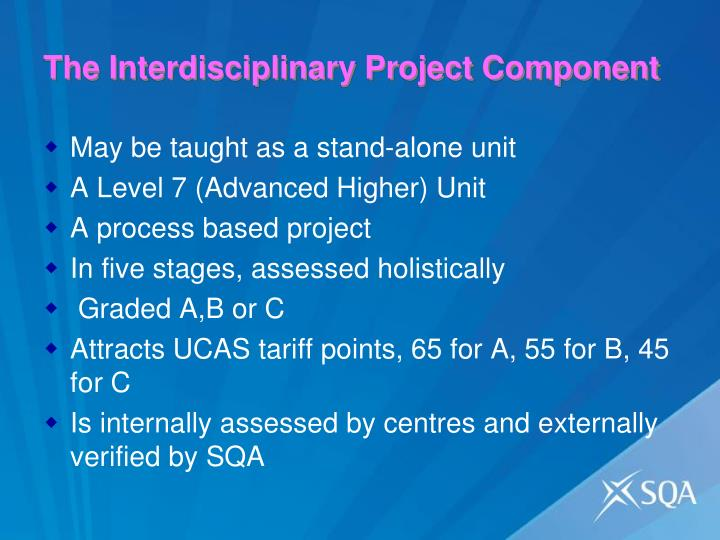 The Interdisciplinary Project Component