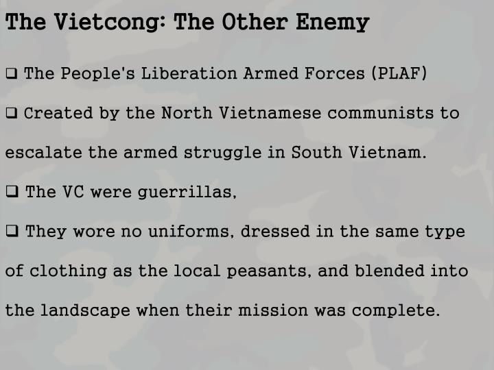 The Vietcong: The Other Enemy