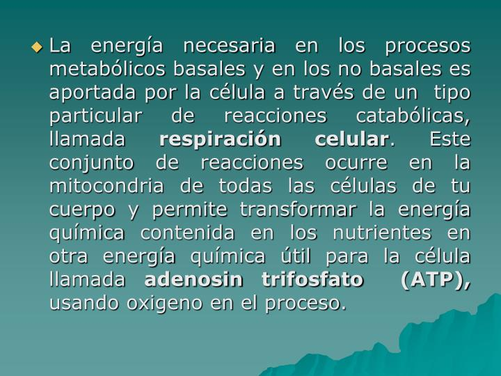 La energía necesaria en los procesos metabólicos basales y en los no basales es aportada por la célula a través de un  tipo particular de reacciones catabólicas, llamada